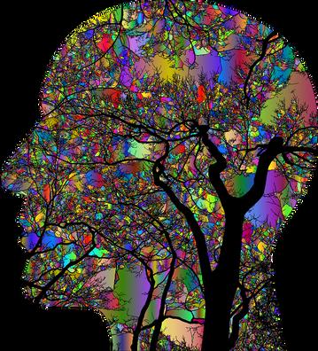 brain-4866447_960_720