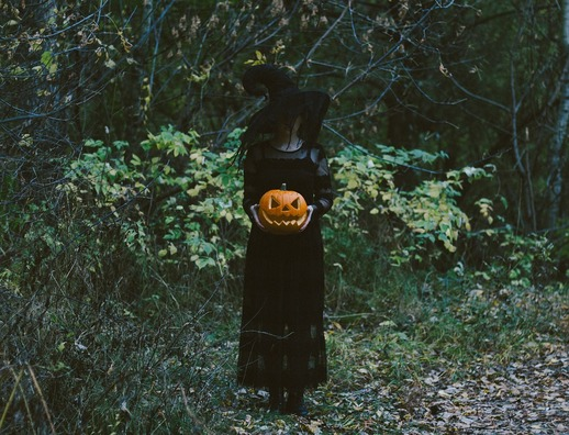 pumpkin-5687560_960_720