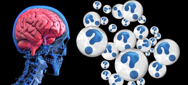 brain-2546101_1920