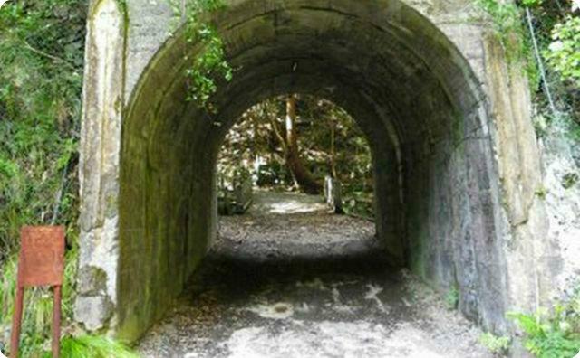 山で犬の散歩してる時に変なトンネル見つけたんだが…