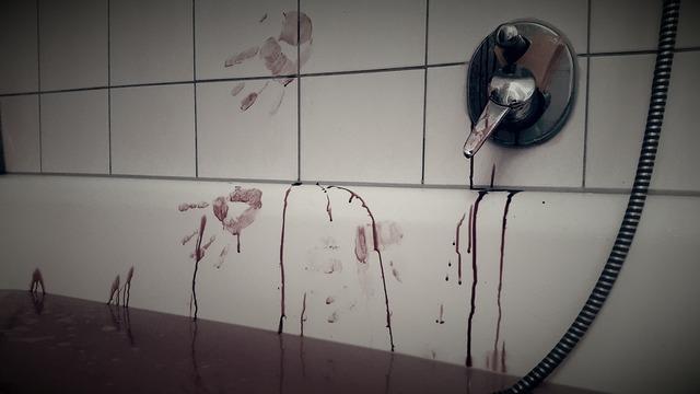bloodbath-891262_1920