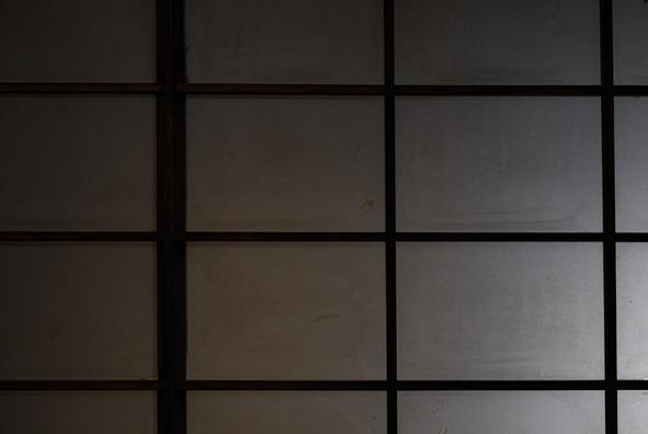 texture982384_TP_V