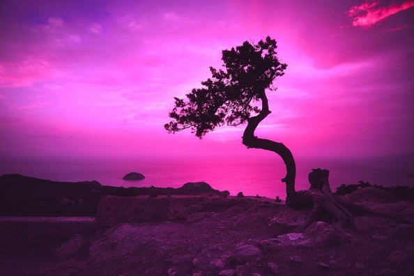 sunset-2052652_1920
