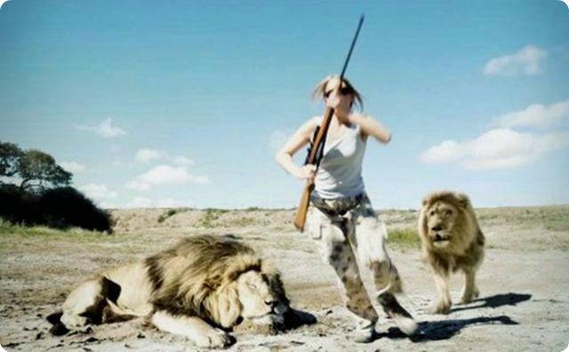 動物の逆襲