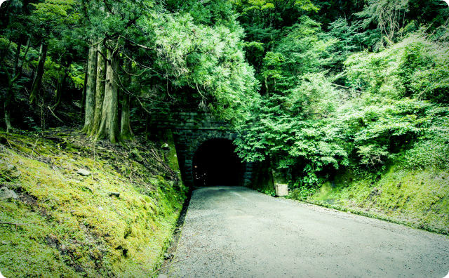 トンネル、山道