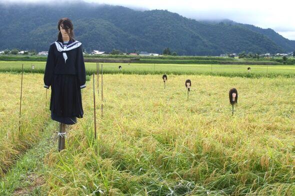 kakashi_kowashi-590x393