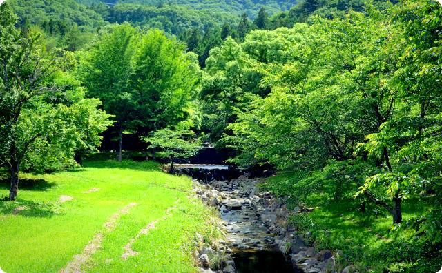 田舎、山、川