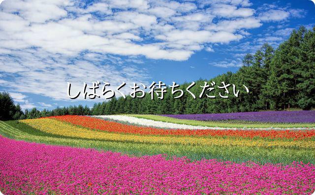 花畑、しばらくお待ちください、閲覧注意