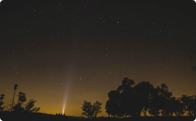 夜、星、流星群