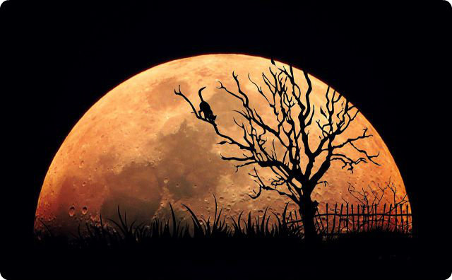 月-不気味な話-夜中電話んの音
