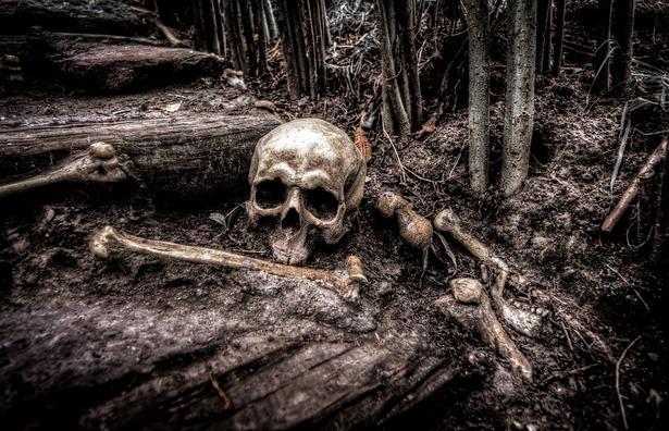 skull-2525192_960_720