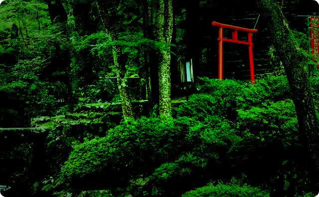 山-遭難-神社-不思議な話