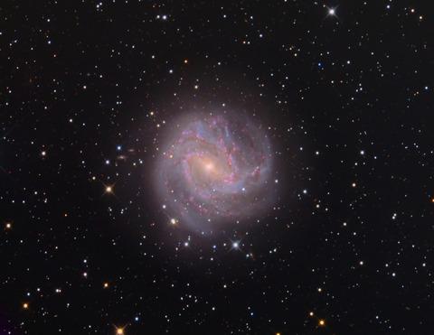 M83-L36-R9A11-G10-B10-PCC-STF-CT-ps_r-rgb-ps-bm-vz-t-MT