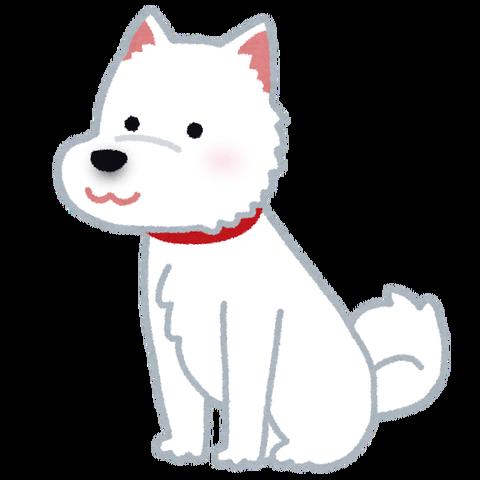 dog_hokkaidouken