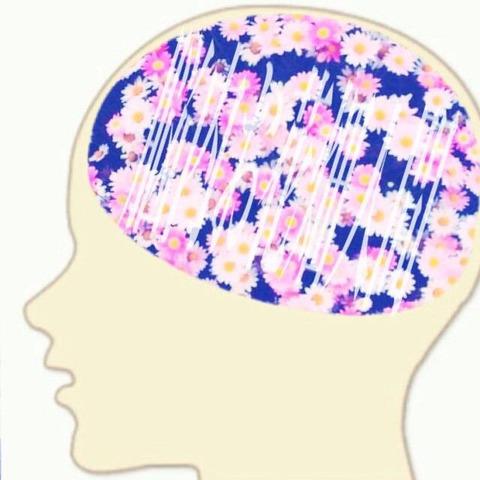 脳内お花畑