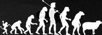 進化と退化