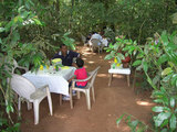 ジャングルの中にあったカフェ