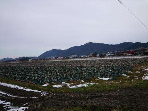 竜王町歴史ウォーキング (25)