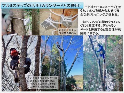木登りステップの活用 (1)