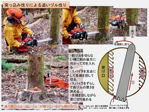 追いヅル伐り説明 (2)