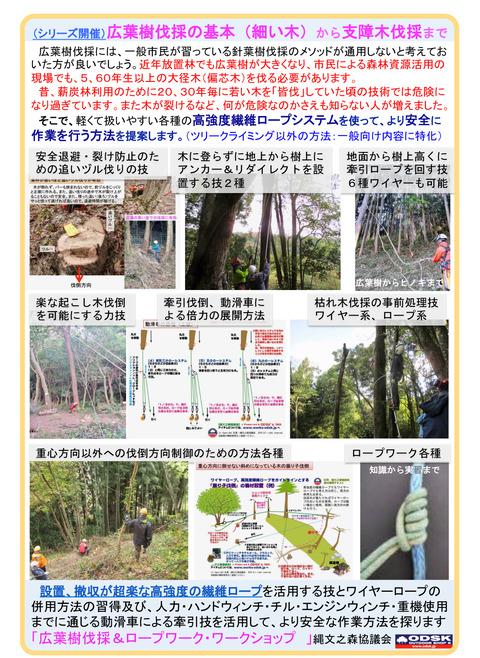 広葉樹伐採WS案内2