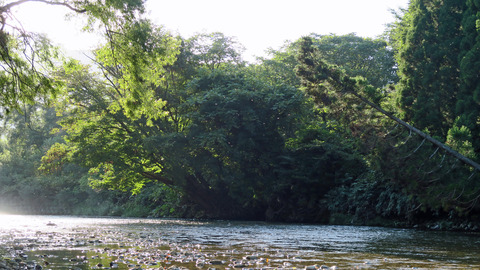 9月の夕方_和賀川水系