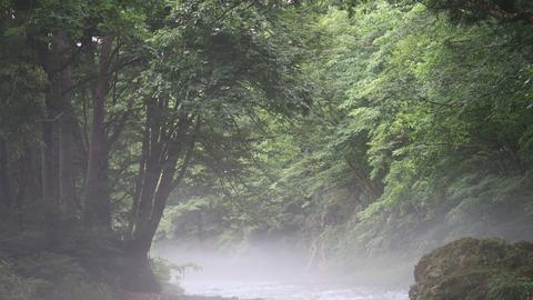 20200726和賀川水系1