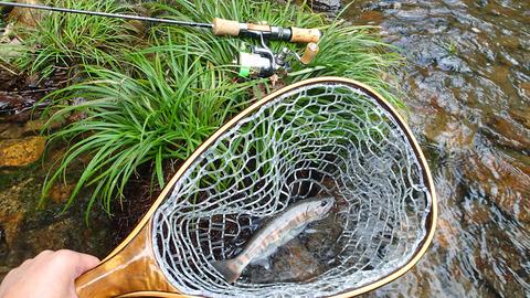 20180929山女魚と釣り具