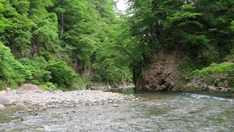 20200613和賀川水系2