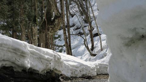 渓流の雪1_20210320