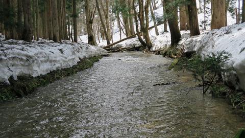 浅瀬が多い渓流_20210403