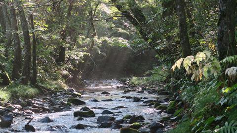9月の和賀川水系_20210925