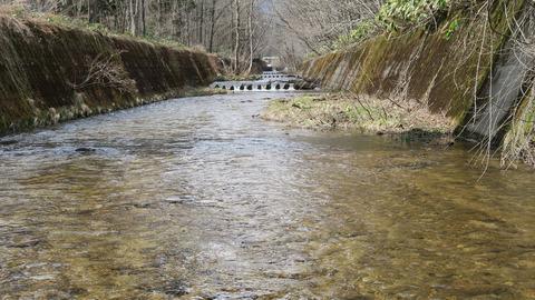 護岸された川_20210403