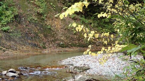 10月の渓流