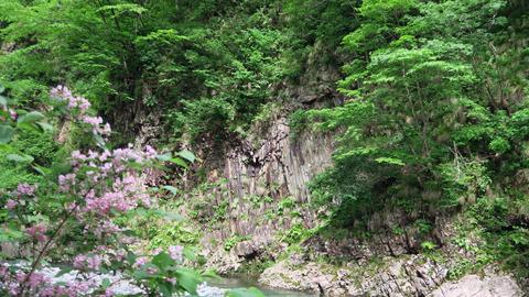 20200613和賀川水系1