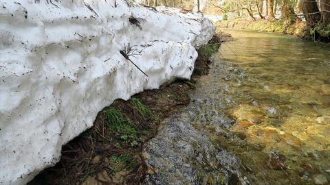 渓流の積雪_20210403