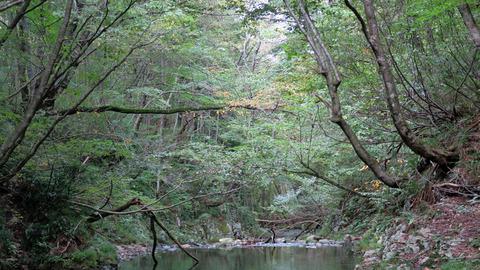 和賀川水系その2_20210924