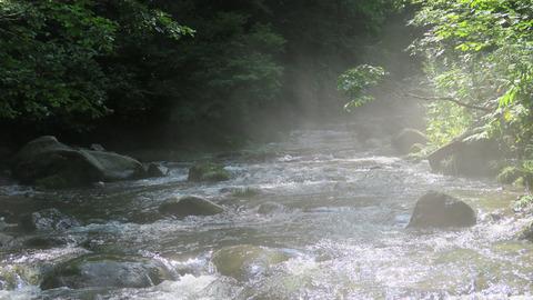 20200811和賀川水系6