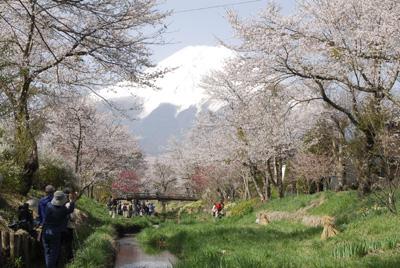 富士山・初級研修_1451_DSC0035