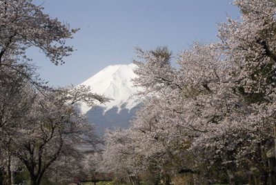 富士山・初級研修_1450_DSC0034