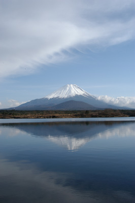 syoujiko4
