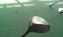 ゴルフクラブを塗装の刷毛に持ち替えたへぼゴルファーMASAのまったりブログなのぉー-DSC_0196.JPG