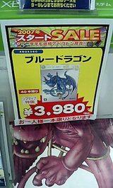 ブルードラゴン3980円