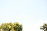 空撮ヘリ1