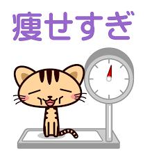 【画像】乃木坂の新センターが拒食症レベルのガリガリと話題に!これと比べたら健康的な矢作のほうがマシだな