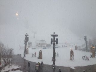 県 連盟 山形 スキー
