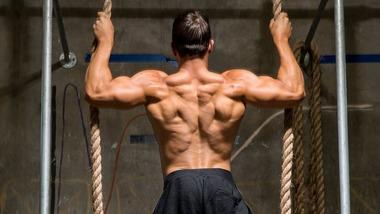 5-back-workouts-for-mass-header-v2-830x467