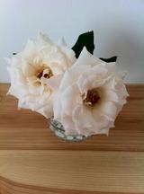 ふたごちゃんの花