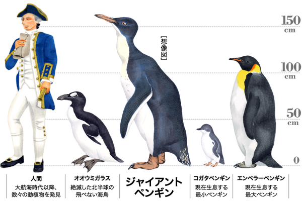 img_penguin_detail_header_img