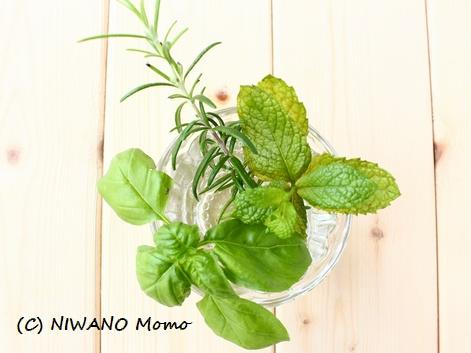 04_herb_02